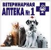 Ветеринарные аптеки в Ивне